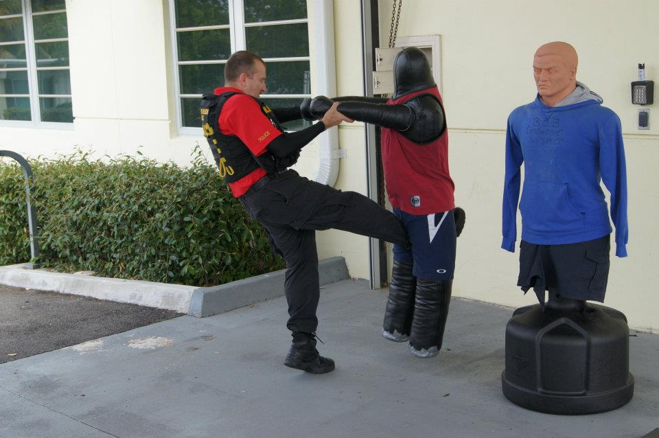 kick in the balls self defense