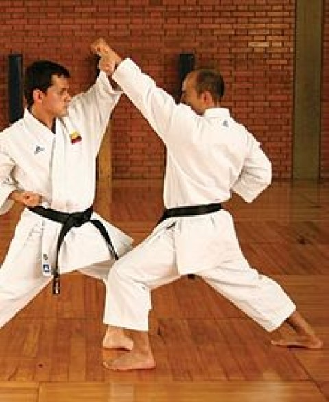Why Traditional Self Defense Blocks Don't Work