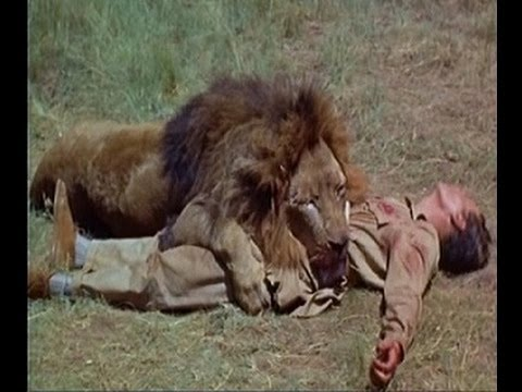 Will The Bodyguard Jacket Stop A Lion Attack